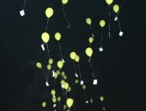Ballonoplating Weerselo